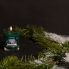 Winter Spruce-44