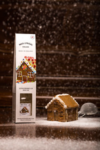 Gingerbread House-14