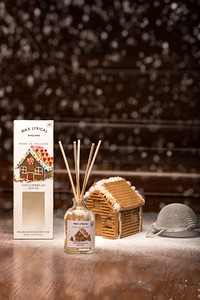 Gingerbread House-29