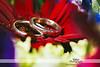 Beth Shalom Wedding - Barnaby & Jamie - 0001