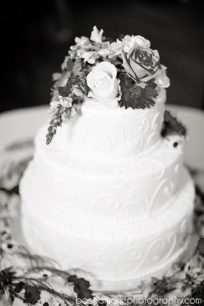 AMYTAMLIN_RECEPTION_09_BW