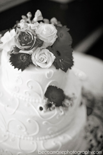AMYTAMLIN_RECEPTION_07_BW