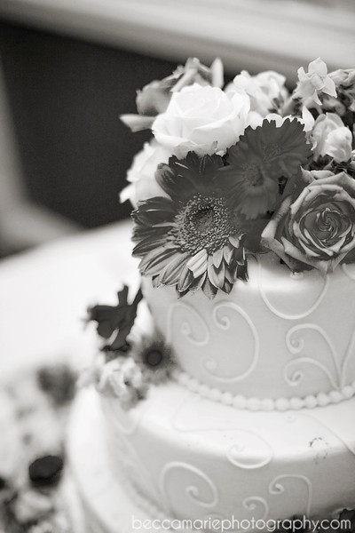 AMYTAMLIN_RECEPTION_06_BW