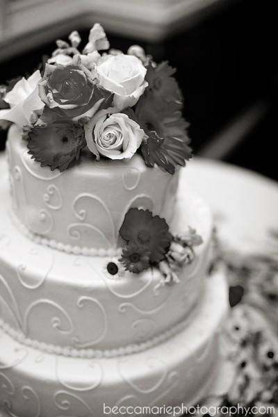 AMYTAMLIN_RECEPTION_04_BW