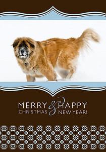 Merry&Happy