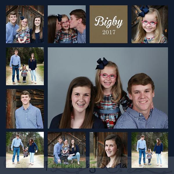 Bigby 2017 13 square photos 8x8 10x10 12x12 navy