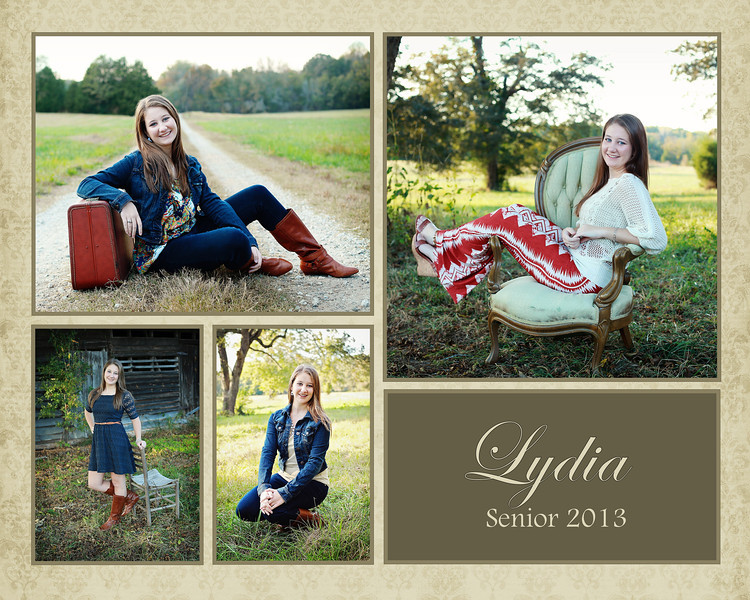 Clarke Lydia 2013 #1