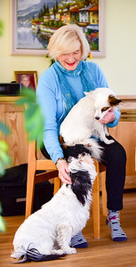 Diana Cooper Author, Horsham Sussex, UK Photos by Sophie Ward 07973725886