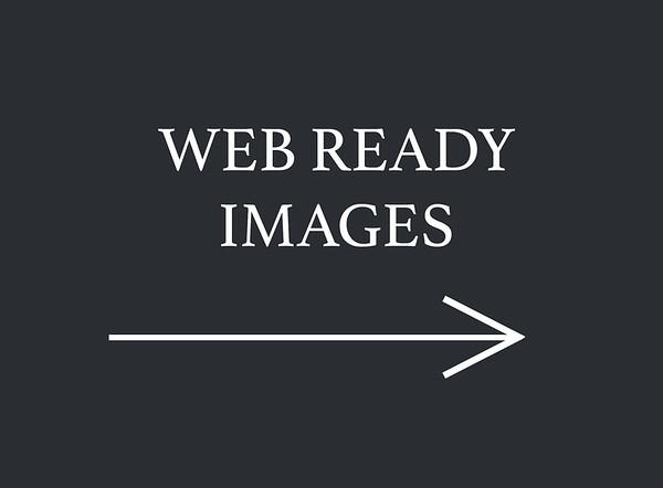 """web ready image"""