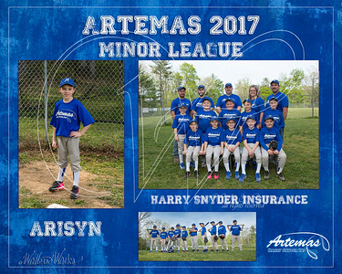 TM T2 Minor Gray Arisyn