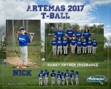 T1 TBall Gray_Nick