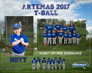 T1 TBall Gray_Hoyt