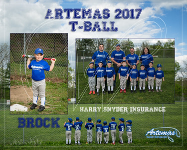 T1 TBall Gray_Brock