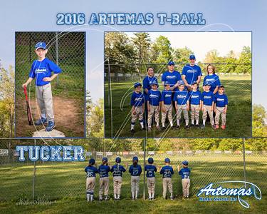 Team Mate Gray ArtemasTB_Tucker