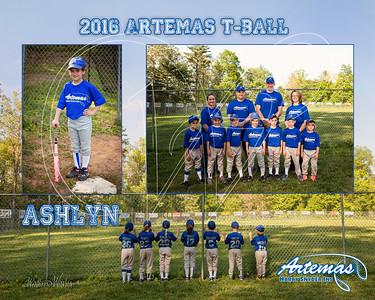 Team Mate Gray ArtemasTB_Ashlyn