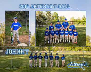 Team Mate Gray ArtemasTB_Johnny