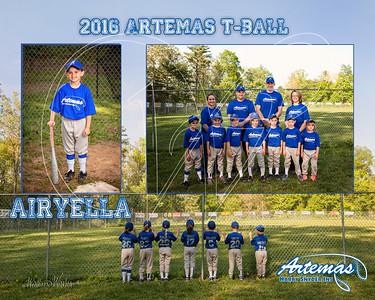 Team Mate Gray ArtemasTB_airyella