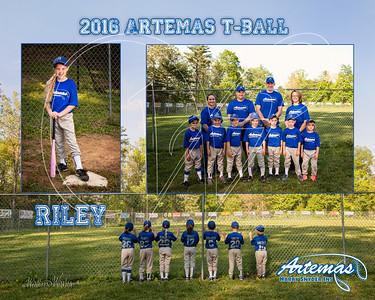 Team Mate Gray ArtemasTB_Riley