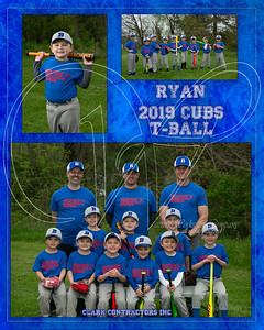 2019 Team Mate Clark Cubs TM