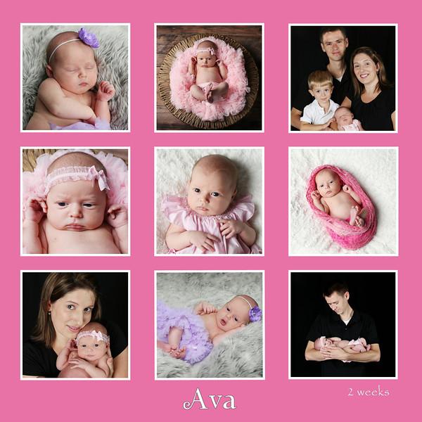 wilson ava pink bw9 pics 10x10
