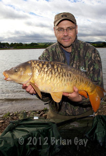 18 lb mirror carp from Durleigh reservoir on a New Grange bottom bait near dam wall. © 2011 Brian Gay