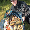 Big bag of crucians and rudd from Rush Lake at Coking Farm, Dorset, © Brian Gay 2008