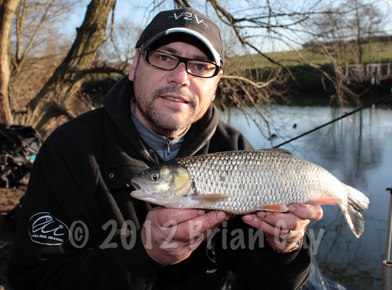 A winter chub from the Bristol Avon at Swineford. © Brian Gay 2008
