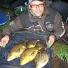 A bag of tench and a nice rudd on poled worm from the Bridgwater & Taunton Canal at Huntworth. © Brian