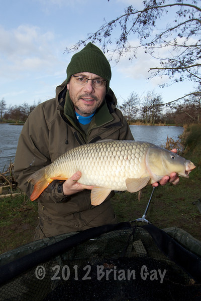 Brian Gay with a typically well conditioned common carp from Burton Springs this 13-pounder fell for a whittled down cell boilie tipped with a slice of a yellow pineapple pop-up.