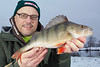 Perch will often be active first thing in the morning, I had this nice stripy on the fourth cast just after arriving at daybreak. It fell to a No.1 Mepps spinner in bronze with the barbs crushed to comply with the fishery barbless ruling. © 2013 Brian Gay
