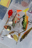 Some of my favourite perch spinners and jigs. © 2013 Brian Gay