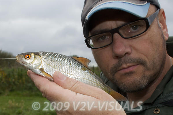 A typical roach from the Longham free stretch, Dorset Stour shoot, 161009. © 2009 Brian Gay.