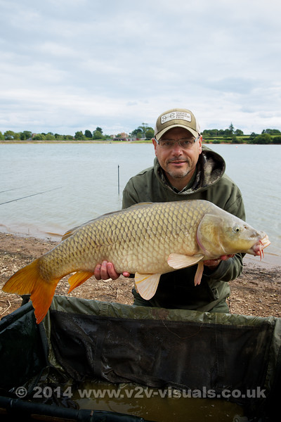 """A typical feature of many Durleigh common carp is that they are long fish with big hads, large mouths and long barbules. This fish came at 5 pm and picked up a Nashbait Purple Monster squid snowman offering featuring a 20 mm bottom bait and 10 mm pop-up offered KD style at 100 yards. It weighed 20 lb 8 oz. © 2014 Shawn Kittridge  <a href=""""http://www.v2v-visuals.co.uk"""">http://www.v2v-visuals.co.uk</a>"""
