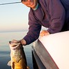 Professional guide Steve Boyd about to return an 8 lb largemouth freshwater bass into Lake Toho, Kissimmee, Florida. USA