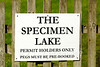 The Specimen Lake permit holders only sign at Milemad, Tavistock, Devon. © 2012 Brian Gay