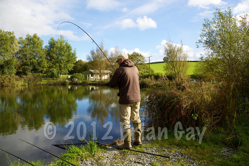 BMiMid afternoon and the actions starts again - Brian Gay plays a 14 lb common carp at peg 1 on the Milemead Specimen Lake. © 2012 Brian Gay