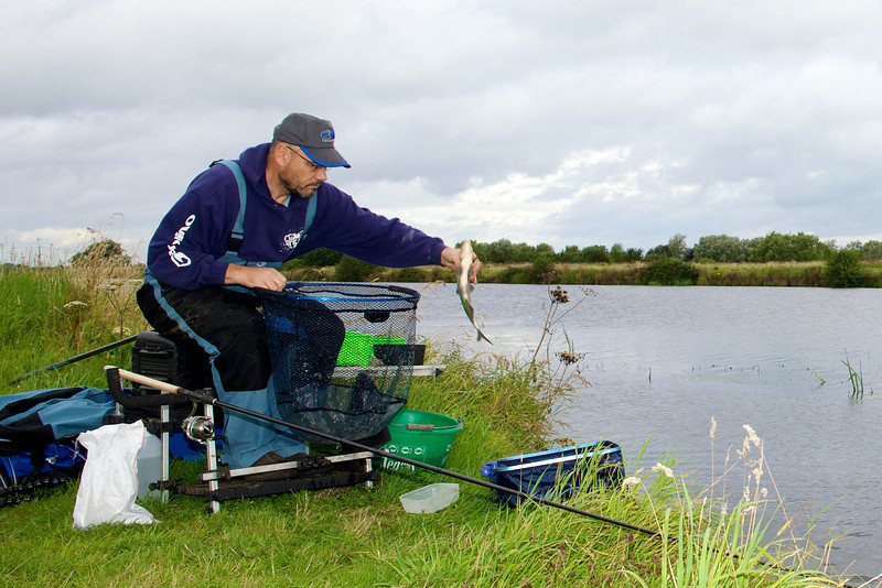 A bream comes to the landing net on the River Huntspill at Gold Corner. © 2011 Brian Gay