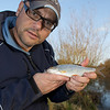 Displaying a typical River Kenn roach. River Kenn session 201109. © 2009 Brian Gay