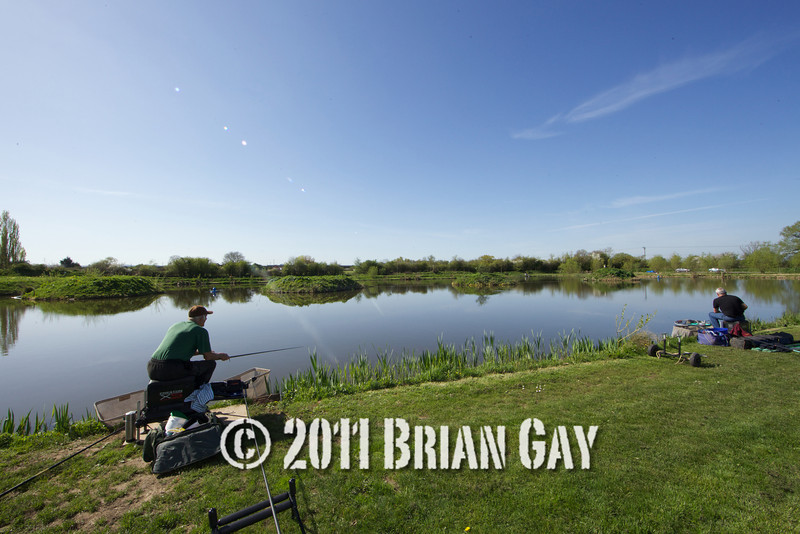 View over Tile pond at the Sedges, Bridgwater, Somerset, on a bright day with clear blue sky. Angler's nearest camera Brian Gatiss, Jamie Cook. © 2011 Brian Gay