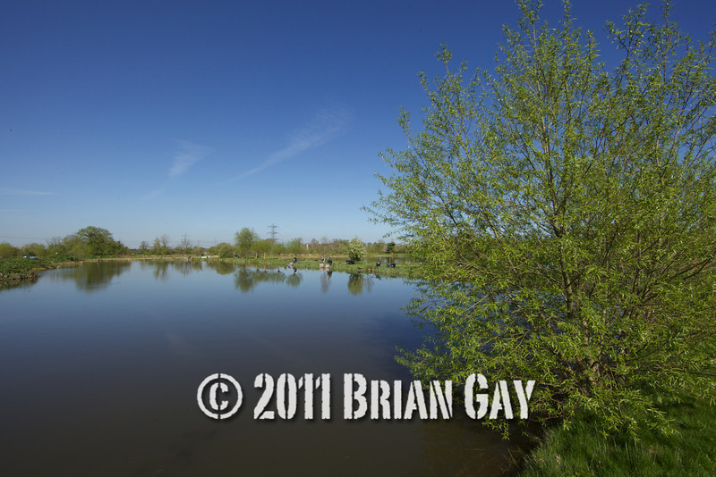 View over Tile pond at the Sedges, Bridgwater, Somerset, on a bright day with clear blue sky. © 2011 Brian Gay