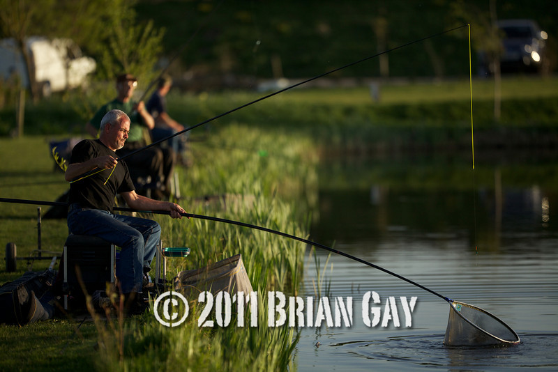 The early evening sunlight shines on Jamie Cook as he nets a decent elastic stretching fish during the top kit challenge at the Tile pond, Sedges, Bridgwater, Somerset. © 2011 Brian Gay
