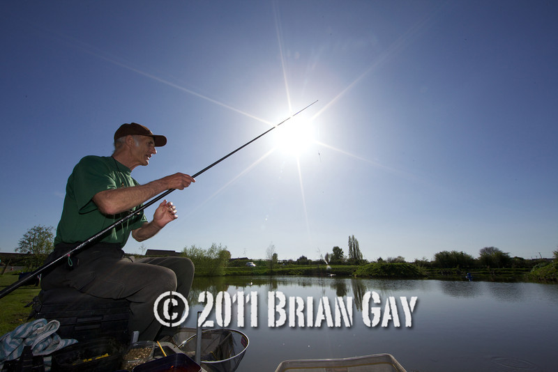 The sun shines brightly in a deep blue cloudless sky as Brian Gatiss swings in a small silver fish on a top kit, Tile pond at the Sedges, Bridgwater, Somerset. © 2011 Brian