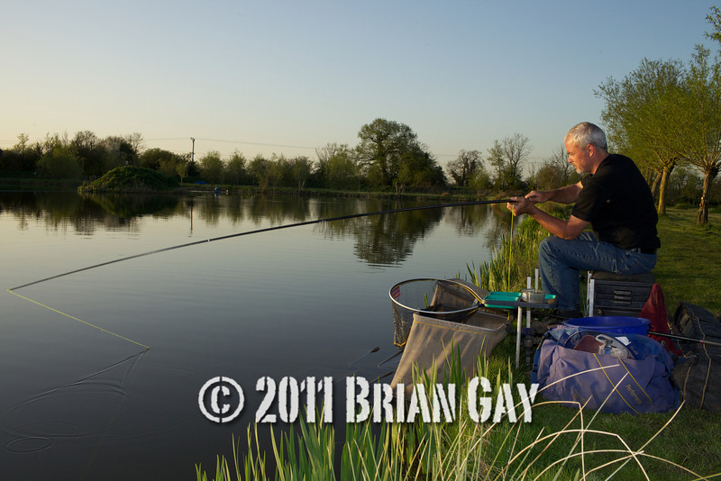 In the glow of the evening sun Jamie Cook holds the top kit as a decent fish stretches the elastic during the top kit challenge at the Tile pond, Sedges, Bridgwater, Somerset. © 2011 Brian Gay