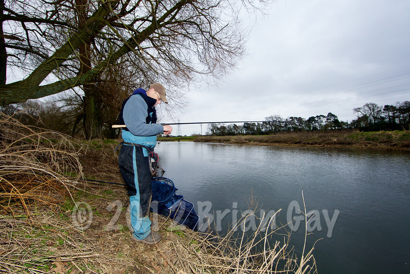 Brian Gay fishes Beat 2 on the Dorset Stour Throop Fishery. Selecting a maggot for the hook.