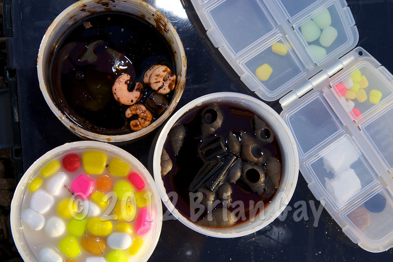 Pots of glugged plastic baits plus a selection of unglugged plastic baits. Various fluro corns, maize and fake boilies in Mainline Cell, fake snails in Essential Products Black Snail dip. Fake shrimps and pellets in CSL. © 2012 Brian Gay
