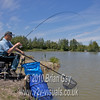 Playing carp. Brian Gay fishing the Pellet Waggler at Trinity Waters, Woodland Lake, 280510. © 2010 Brian Gay