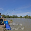 First carp is hooked. Brian Gay fishing the Pellet Waggler at Trinity Waters, Woodland Lake, 280510. © 2010 Brian Gay