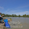 Preparing to net a carp. Brian Gay fishing the Pellet Waggler at Trinity Waters, Woodland Lake, 280510. © 2010 Brian Gay