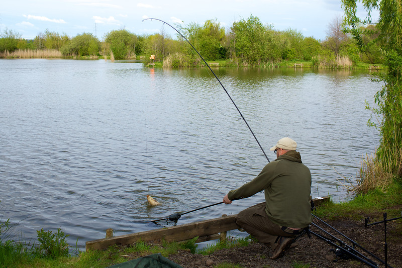 carp action on the Korum rod and Freespin reel