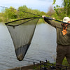 carp action on the Shimano Tribla 11 ft. 2.75 lb tc rod and method feeder, bream in the net